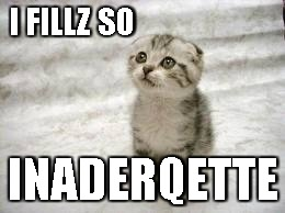 I FILLZ SO INADERQETTE | image tagged in memes,sad cat | made w/ Imgflip meme maker
