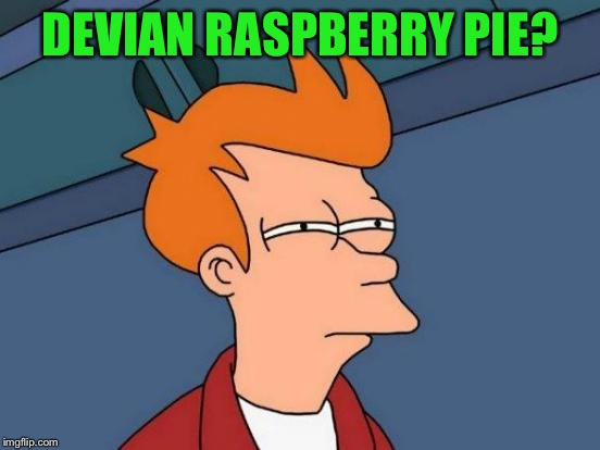 Futurama Fry Meme | DEVIAN RASPBERRY PIE? | image tagged in memes,futurama fry | made w/ Imgflip meme maker