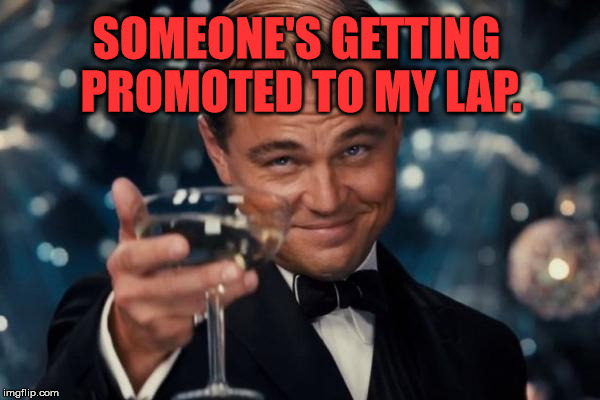 Leonardo Dicaprio Cheers Meme | SOMEONE'S GETTING PROMOTED TO MY LAP. | image tagged in memes,leonardo dicaprio cheers | made w/ Imgflip meme maker