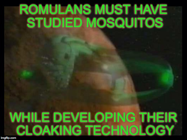 Ever try to kill a mosquito, but it just disappears in thin air? | ROMULANS MUST HAVE STUDIED MOSQUITOS WHILE DEVELOPING THEIR CLOAKING TECHNOLOGY | image tagged in mosquito,cloaking technology,romulan | made w/ Imgflip meme maker
