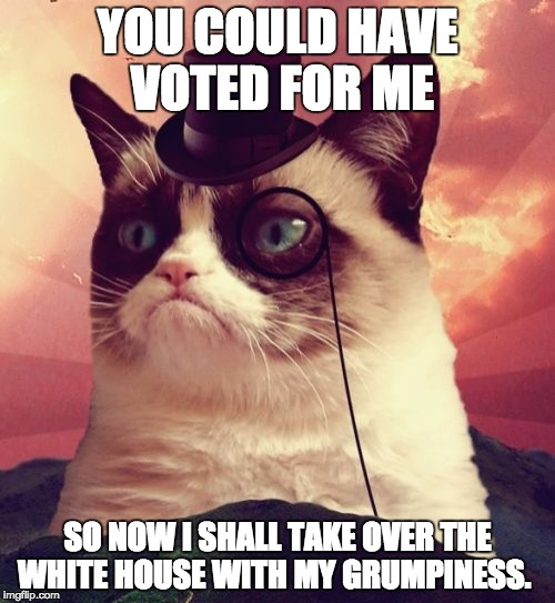 Grumpy Cat Top Hat | YOU COULD HAVE VOTED FOR ME SO NOW I SHALL TAKE OVER THE WHITE HOUSE WITH MY GRUMPINESS. | image tagged in memes,grumpy cat top hat,grumpy cat | made w/ Imgflip meme maker