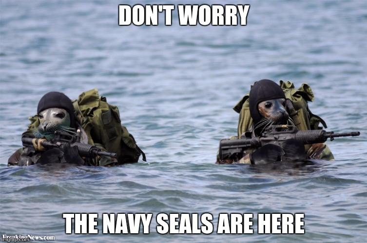 Navy Seals | DON'T WORRY THE NAVY SEALS ARE HERE | image tagged in memes,navy seals | made w/ Imgflip meme maker