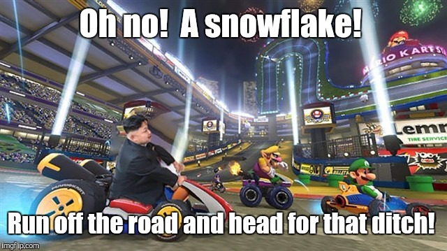 Kim Jong Un 3 | Oh no!  A snowflake! Run off the road and head for that ditch! | image tagged in kim jong un 3 | made w/ Imgflip meme maker