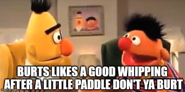 spanking |  BURTS LIKES A GOOD WHIPPING AFTER A LITTLE PADDLE DON'T YA BURT | image tagged in bert and ernie,whip | made w/ Imgflip meme maker