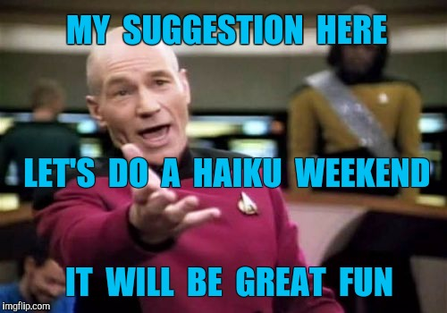 Any takers on doing a Haiku Weekend? | MY  SUGGESTION  HERE IT  WILL  BE  GREAT  FUN LET'S  DO  A  HAIKU  WEEKEND | image tagged in picard wtf,haiku,weekend | made w/ Imgflip meme maker