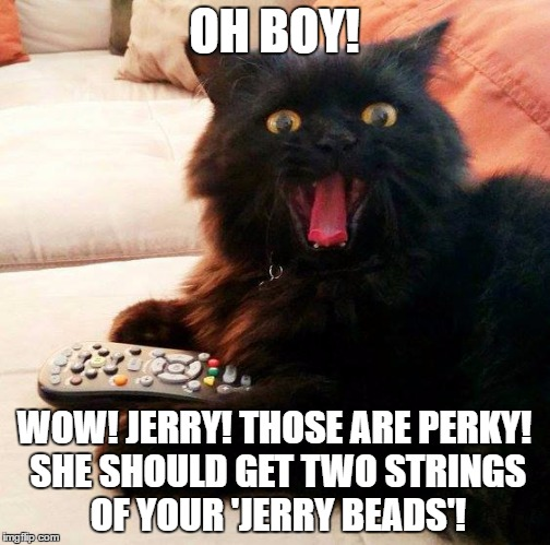 OH BOY! Cat loves when the girls want their  'Jerry Beads'!  |  OH BOY! WOW! JERRY! THOSE ARE PERKY! SHE SHOULD GET TWO STRINGS OF YOUR 'JERRY BEADS'! | image tagged in oh boy cat,memes,jerry springer,tits,talk show,funny | made w/ Imgflip meme maker