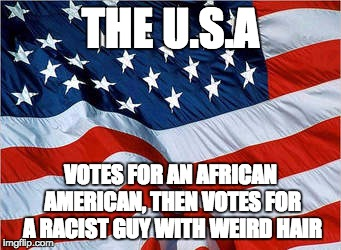 USA Flag | THE U.S.A VOTES FOR AN AFRICAN AMERICAN, THEN VOTES FOR A RACIST GUY WITH WEIRD HAIR | image tagged in usa flag | made w/ Imgflip meme maker