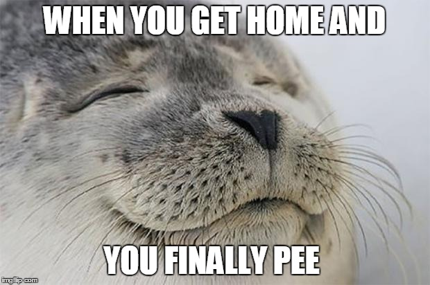 Satisfied Seal |  WHEN YOU GET HOME AND; YOU FINALLY PEE | image tagged in memes,satisfied seal | made w/ Imgflip meme maker
