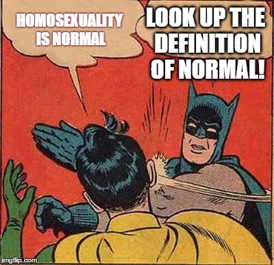 Batman Slapping Robin Meme |  LOOK UP THE DEFINITION OF NORMAL! HOMOSEXUALITY IS NORMAL | image tagged in memes,batman slapping robin | made w/ Imgflip meme maker