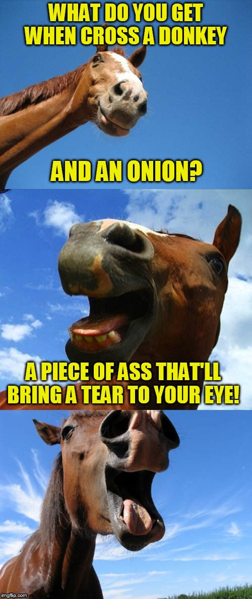 Just Horsing Around | WHAT DO YOU GET WHEN CROSS A DONKEY AND AN ONION? A PIECE OF ASS THAT'LL BRING A TEAR TO YOUR EYE! | image tagged in just horsing around | made w/ Imgflip meme maker