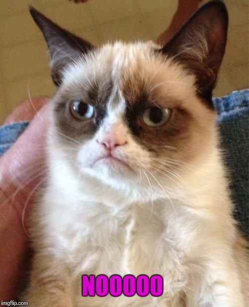 Grumpy Cat Meme | NOOOOO | image tagged in memes,grumpy cat | made w/ Imgflip meme maker