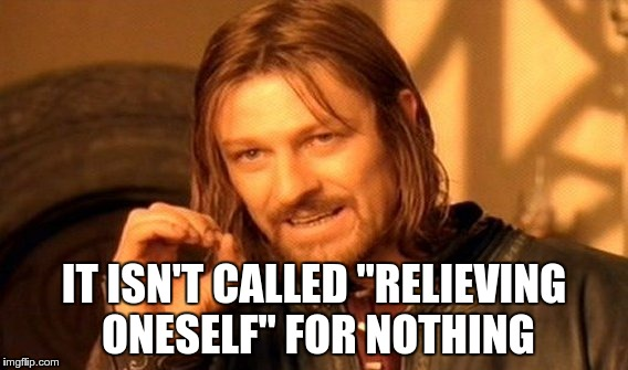 "One Does Not Simply Meme | IT ISN'T CALLED ""RELIEVING ONESELF"" FOR NOTHING 