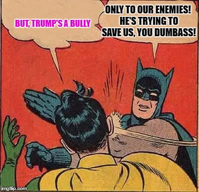 Batman Slapping Robin Meme | BUT, TRUMP'S A BULLY ONLY TO OUR ENEMIES! HE'S TRYING TO SAVE US, YOU DUMBASS! | image tagged in memes,batman slapping robin | made w/ Imgflip meme maker
