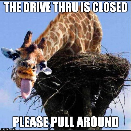 THE DRIVE THRU IS CLOSED PLEASE PULL AROUND | made w/ Imgflip meme maker