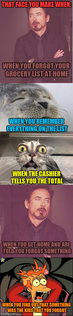 I Always Forget Something | THAT FACE YOU MAKE WHEN: WHEN YOU FIND OUT THAT SOMETHING WAS THE KIDS THAT YOU FORGOT WHEN YOU FORGOT YOUR GROCERY LIST AT HOME WHEN YOU RE | image tagged in that face you make when,satisfied seal,angry wet cat,face you make robert downey jr,fry freaking out,groceries | made w/ Imgflip meme maker