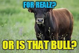 FOR REALZ? OR IS THAT BULL? | made w/ Imgflip meme maker