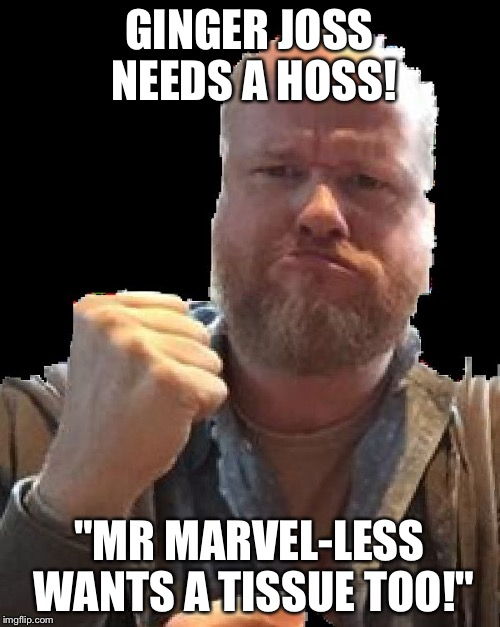 "GINGER JOSS NEEDS A HOSS! ""MR MARVEL-LESS WANTS A TISSUE TOO!"" 