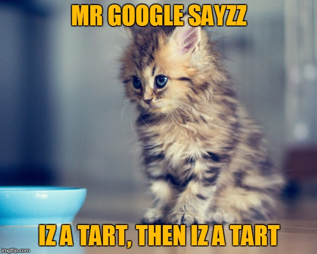 MR GOOGLE SAYZZ IZ A TART, THEN IZ A TART | made w/ Imgflip meme maker