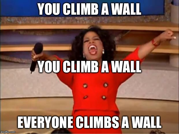Oprah You Get A Meme | YOU CLIMB A WALL EVERYONE CLIMBS A WALL YOU CLIMB A WALL | image tagged in memes,oprah you get a | made w/ Imgflip meme maker