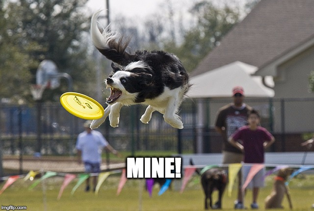 MINE! | image tagged in mine | made w/ Imgflip meme maker