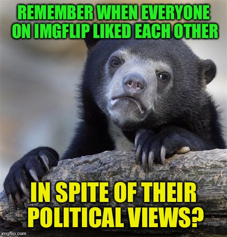 Well, except for the trolls | REMEMBER WHEN EVERYONE ON IMGFLIP LIKED EACH OTHER IN SPITE OF THEIR POLITICAL VIEWS? | image tagged in memes,confession bear | made w/ Imgflip meme maker