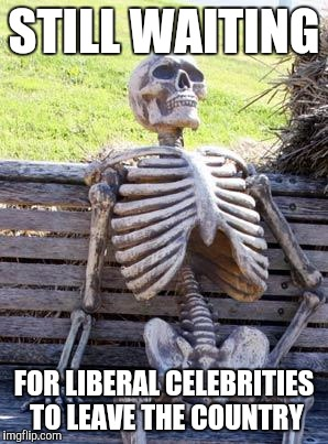 Patiently waiting... We haven't forgotten |  STILL WAITING; FOR LIBERAL CELEBRITIES TO LEAVE THE COUNTRY | image tagged in memes,waiting skeleton,celebrities,2016 election,retarded liberal protesters,liberal logic | made w/ Imgflip meme maker