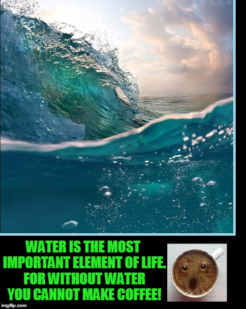 It's Scientifically Proven | WATER IS THE MOST IMPORTANT ELEMENT OF LIFE. FOR WITHOUT WATER YOU CANNOT MAKE COFFEE! | image tagged in vince vance,coffee,water,beautiful water,coffe looks surprised | made w/ Imgflip meme maker
