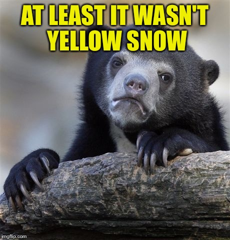 Confession Bear Meme | AT LEAST IT WASN'T YELLOW SNOW | image tagged in memes,confession bear | made w/ Imgflip meme maker