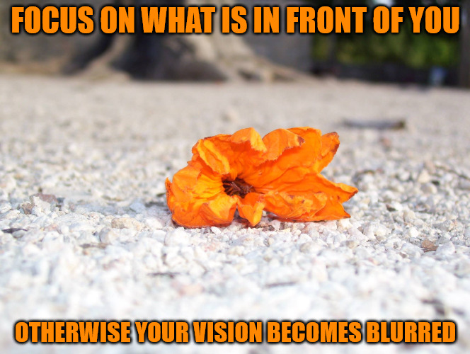 Focus | FOCUS ON WHAT IS IN FRONT OF YOU OTHERWISE YOUR VISION BECOMES BLURRED | image tagged in memes,photos by ghost,chichen itza mexico,did someone say chicken pizza,now i want pizza | made w/ Imgflip meme maker