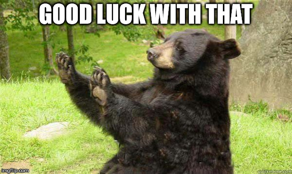 No Bear Blank | GOOD LUCK WITH THAT | image tagged in no bear blank | made w/ Imgflip meme maker