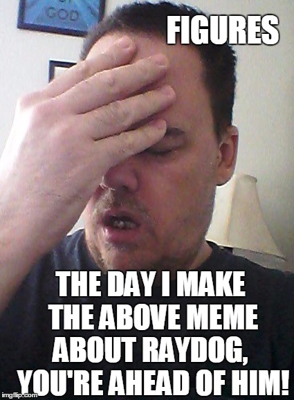 face palm | FIGURES THE DAY I MAKE THE ABOVE MEME ABOUT RAYDOG,  YOU'RE AHEAD OF HIM! | image tagged in face palm | made w/ Imgflip meme maker