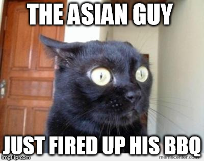 Scared Cat | THE ASIAN GUY JUST FIRED UP HIS BBQ | image tagged in scared cat | made w/ Imgflip meme maker