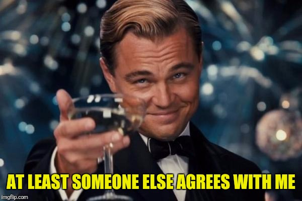 Leonardo Dicaprio Cheers Meme | AT LEAST SOMEONE ELSE AGREES WITH ME | image tagged in memes,leonardo dicaprio cheers | made w/ Imgflip meme maker