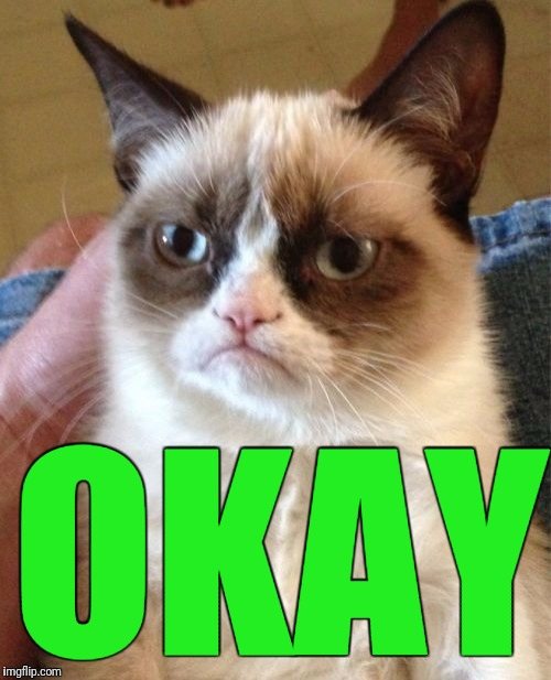 Grumpy Cat Meme | OKAY | image tagged in memes,grumpy cat | made w/ Imgflip meme maker