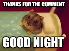 THANKS FOR THE COMMENT GOOD NIGHT | made w/ Imgflip meme maker