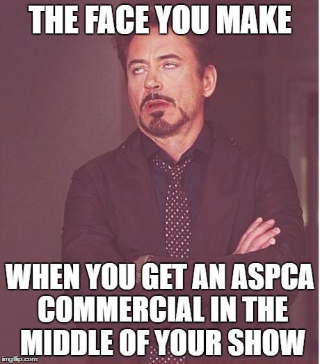 The 6 minutes of commercials I have to wait through almost cancels out how sad it is. |  THE FACE YOU MAKE; WHEN YOU GET AN ASPCA COMMERCIAL IN THE MIDDLE OF YOUR SHOW | image tagged in memes,face you make robert downey jr | made w/ Imgflip meme maker