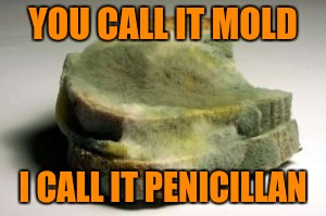 YOU CALL IT MOLD I CALL IT PENICILLAN | made w/ Imgflip meme maker