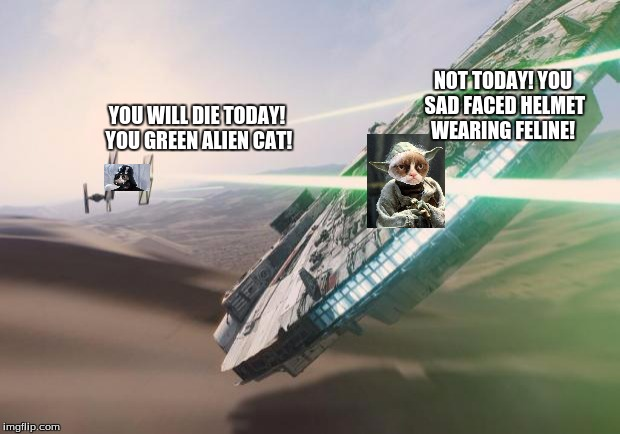 Welcome to the Grumpyverse 1 | YOU WILL DIE TODAY! YOU GREEN ALIEN CAT! NOT TODAY! YOU SAD FACED HELMET WEARING FELINE! | image tagged in force awakens falcon star wars vii,grumpy star wars,star wars,darth vader,star wars yoda | made w/ Imgflip meme maker