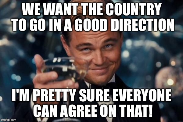 Leonardo Dicaprio Cheers Meme | WE WANT THE COUNTRY TO GO IN A GOOD DIRECTION I'M PRETTY SURE EVERYONE CAN AGREE ON THAT! | image tagged in memes,leonardo dicaprio cheers | made w/ Imgflip meme maker
