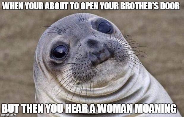 wtf is going on in there? | WHEN YOUR ABOUT TO OPEN YOUR BROTHER'S DOOR BUT THEN YOU HEAR A WOMAN MOANING | image tagged in memes,awkward moment sealion | made w/ Imgflip meme maker