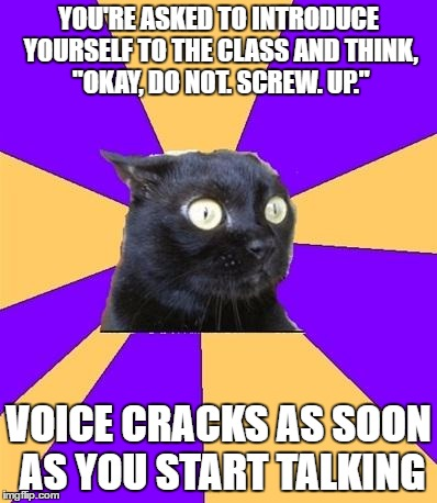 "My social skills in a nutshell. |  YOU'RE ASKED TO INTRODUCE YOURSELF TO THE CLASS AND THINK, ""OKAY, DO NOT. SCREW. UP.""; VOICE CRACKS AS SOON AS YOU START TALKING 