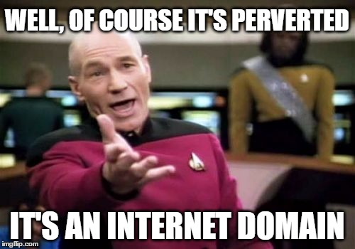 Picard Wtf Meme | WELL, OF COURSE IT'S PERVERTED IT'S AN INTERNET DOMAIN | image tagged in memes,picard wtf | made w/ Imgflip meme maker