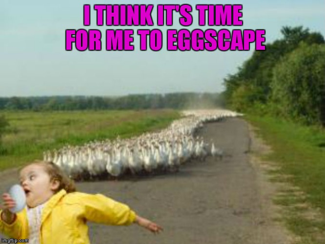 I THINK IT'S TIME FOR ME TO EGGSCAPE | made w/ Imgflip meme maker