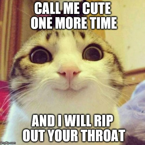 Smiling Cat Meme | CALL ME CUTE ONE MORE TIME AND I WILL RIP OUT YOUR THROAT | image tagged in memes,smiling cat | made w/ Imgflip meme maker