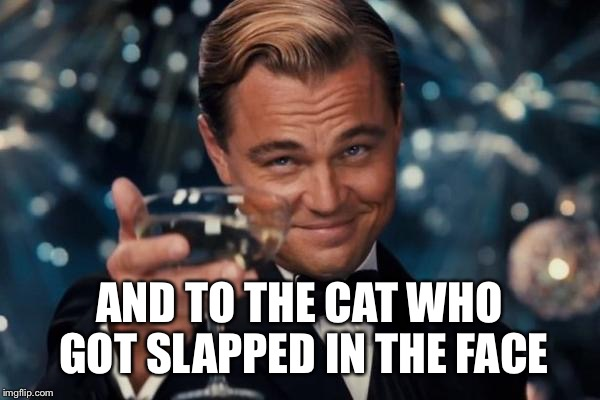 Leonardo Dicaprio Cheers Meme | AND TO THE CAT WHO GOT SLAPPED IN THE FACE | image tagged in memes,leonardo dicaprio cheers | made w/ Imgflip meme maker