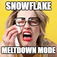 SNOWFLAKE MELTDOWN MODE | made w/ Imgflip meme maker