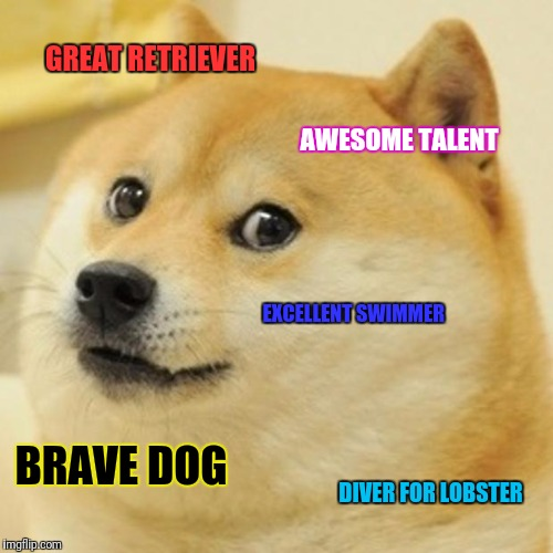 Doge Meme | GREAT RETRIEVER AWESOME TALENT EXCELLENT SWIMMER BRAVE DOG DIVER FOR LOBSTER | image tagged in memes,doge | made w/ Imgflip meme maker