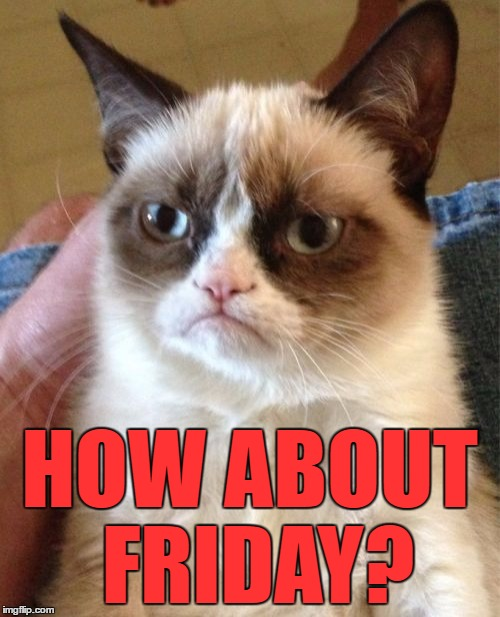 Grumpy Cat Meme | HOW ABOUT FRIDAY? | image tagged in memes,grumpy cat | made w/ Imgflip meme maker
