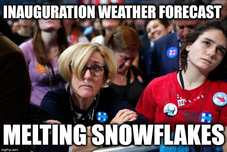 Image result for snowflake SJW