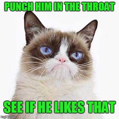 PUNCH HIM IN THE THROAT SEE IF HE LIKES THAT | made w/ Imgflip meme maker